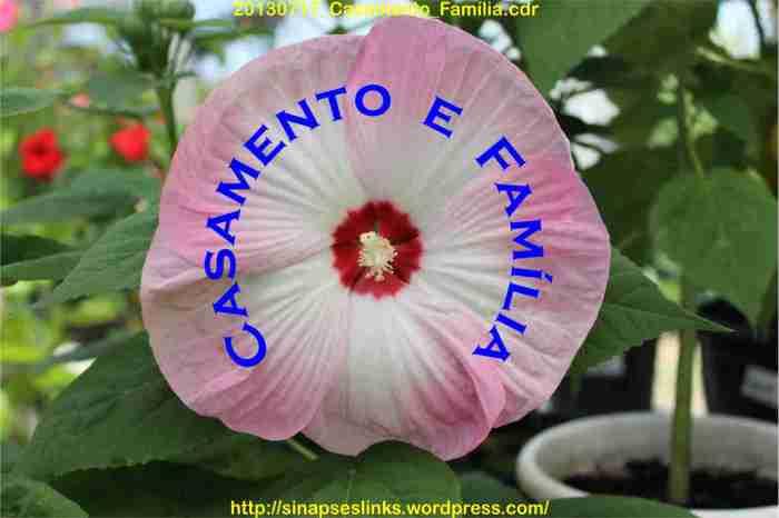 20130717_Casamento_Família