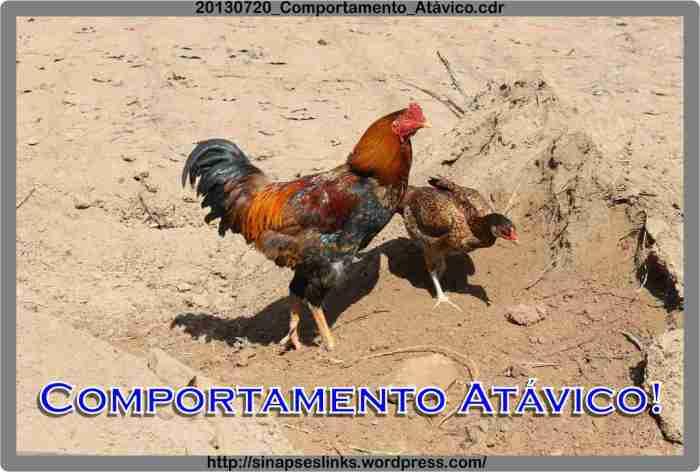 20130720_Comportamento_Atávico