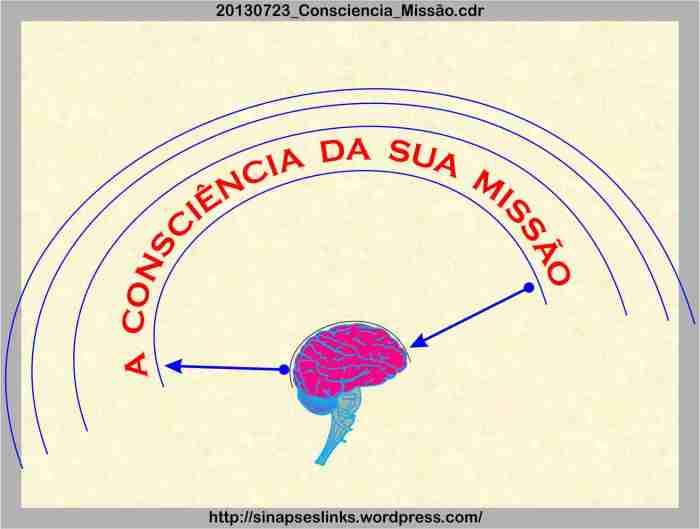 20130723_Consciencia_Missão