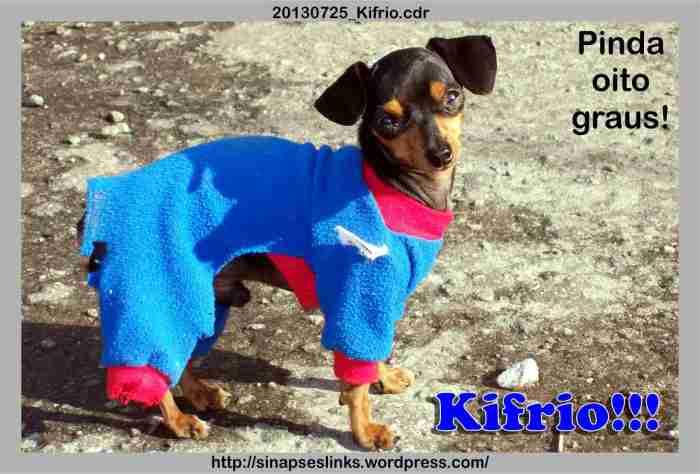 20130725_Kifrio