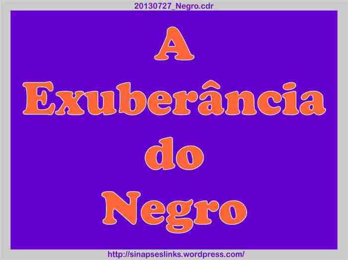 20130727_Negro_01