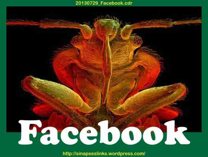 20130729_Facebook
