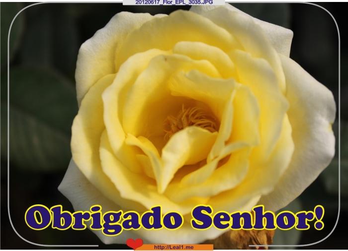 sUzB_20120617_Flor_EPL_3035