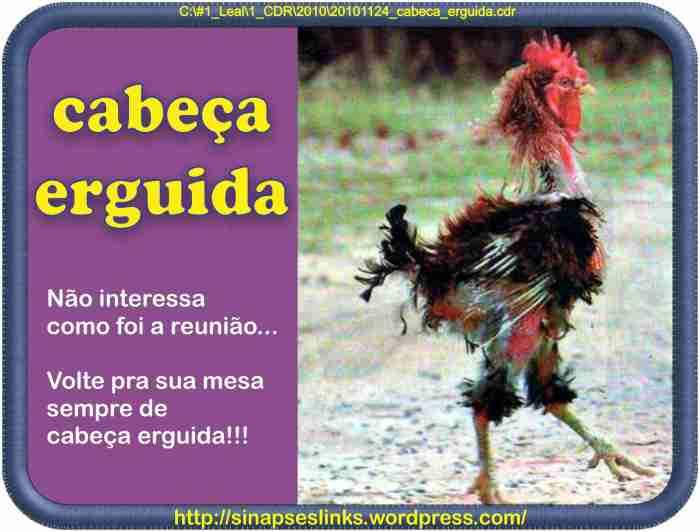 20101124_cabeca_erguida