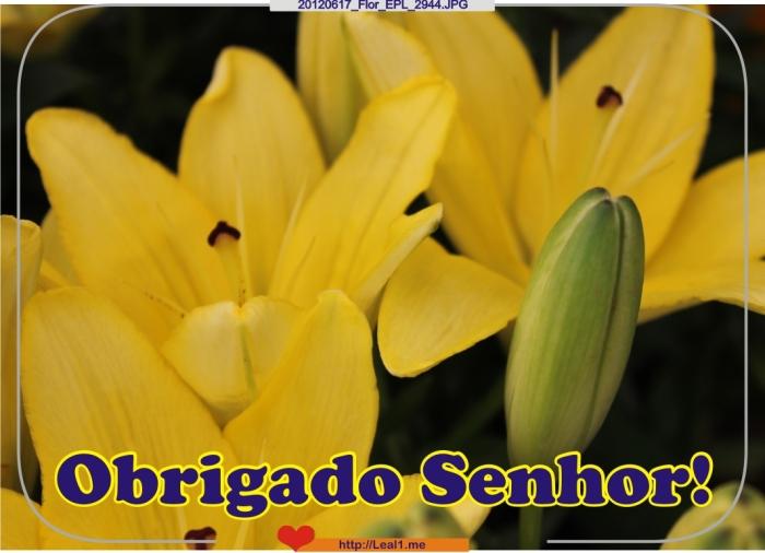 20120617_Flor_EPL_2944