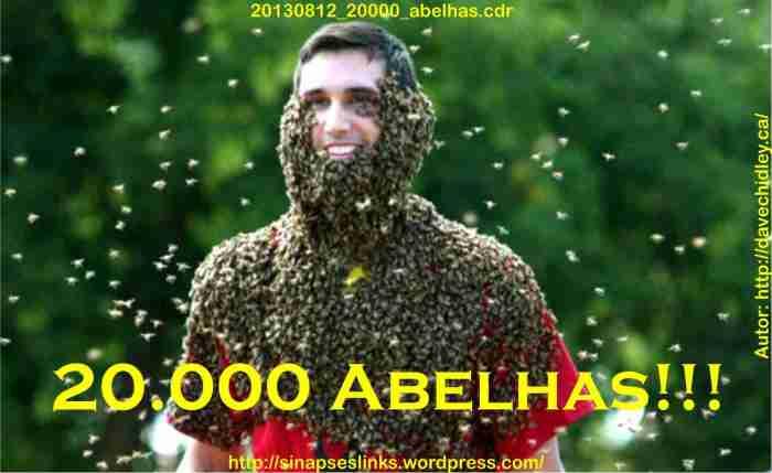 20130812_20000_abelhas
