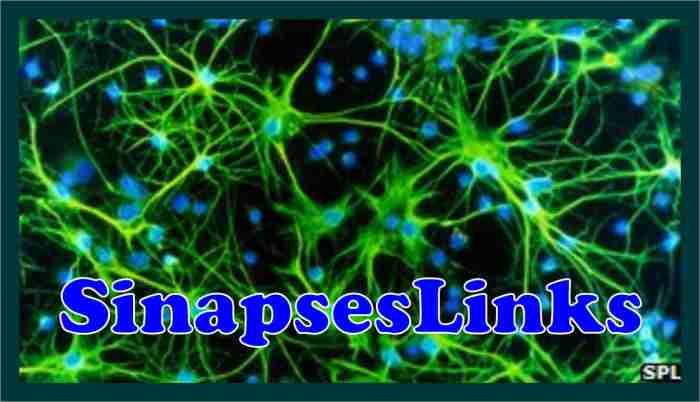 20130813_SinapsesLinks