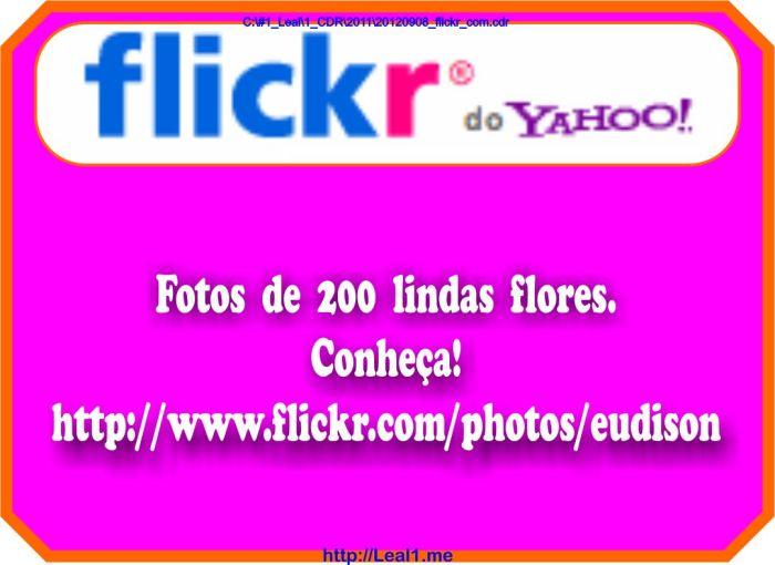 https://www.flickr.com/photos/eudison/