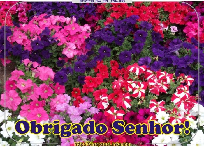 20120216_Flor_EPL_1704