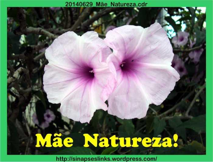 20140629_Mãe_Natureza