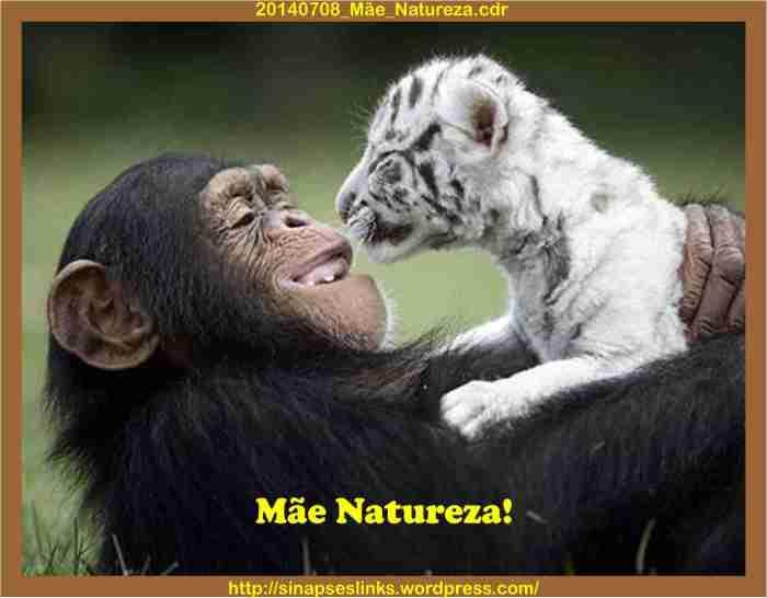 20140708_Mãe_Natureza