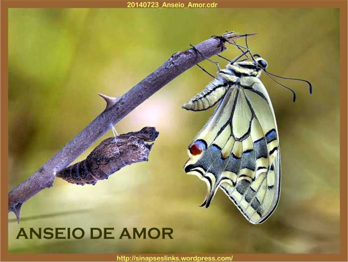 20140723_Anseio_Amor