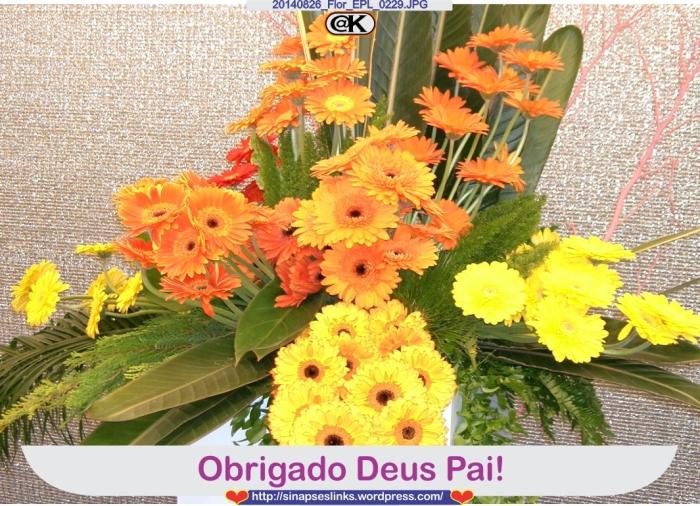 20140826_Flor_EPL_0229