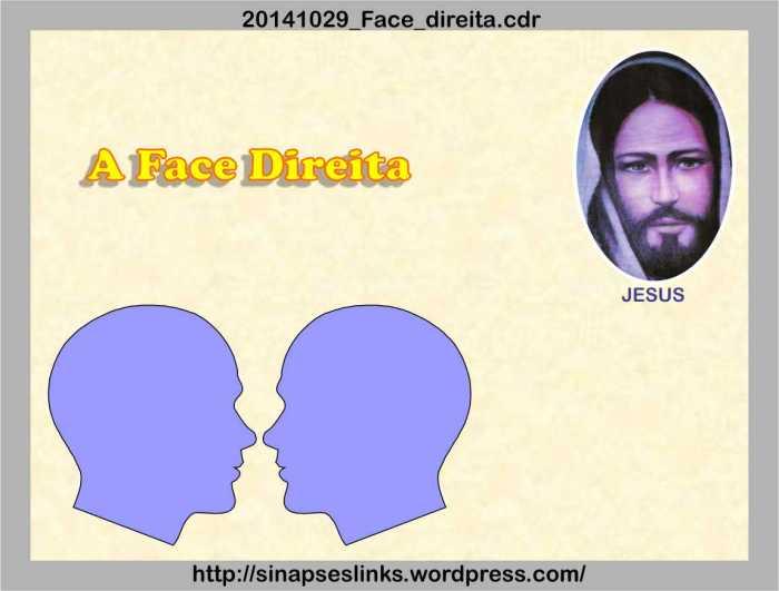 20141029_Face_direita