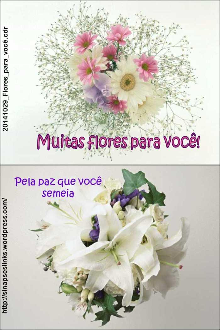 20141029_Flores_para_você