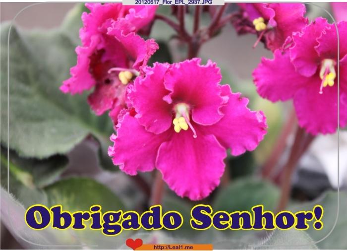 20120617_Flor_EPL_2937