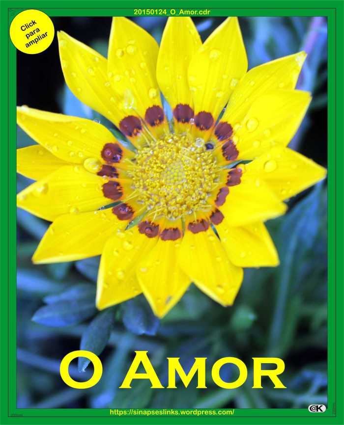20150124_O_Amor