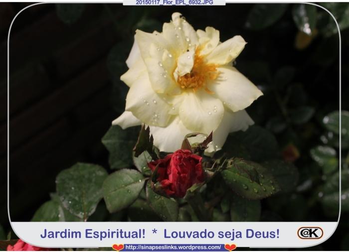 20150117_Flor_EPL_6932