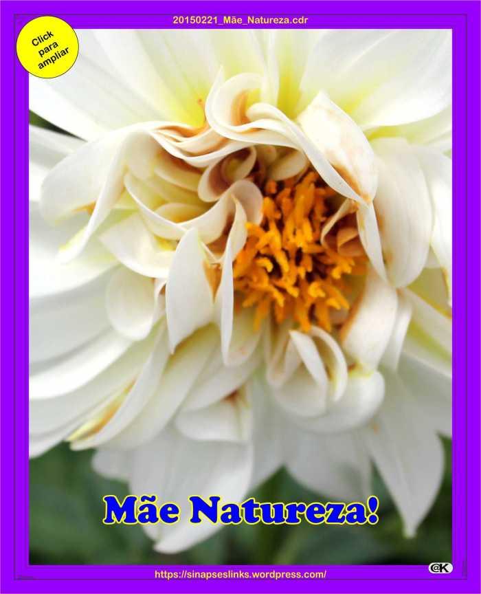 20150221_Mãe_Natureza