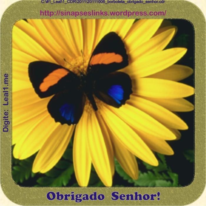 20111006_borboleta_obrigado_senhor