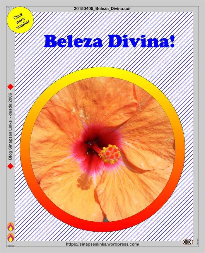 20150405_Beleza_Divina