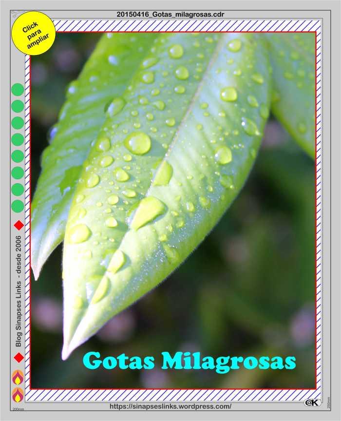 20150416_Gotas_milagrosas