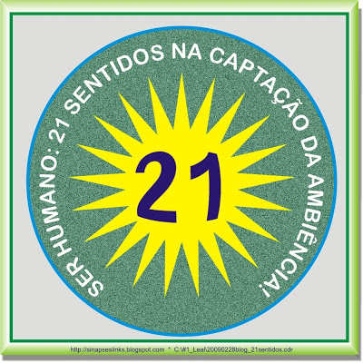 20090228blog_21sentidos