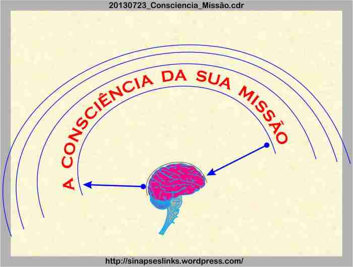 20130723_consciencia_missc3a3o
