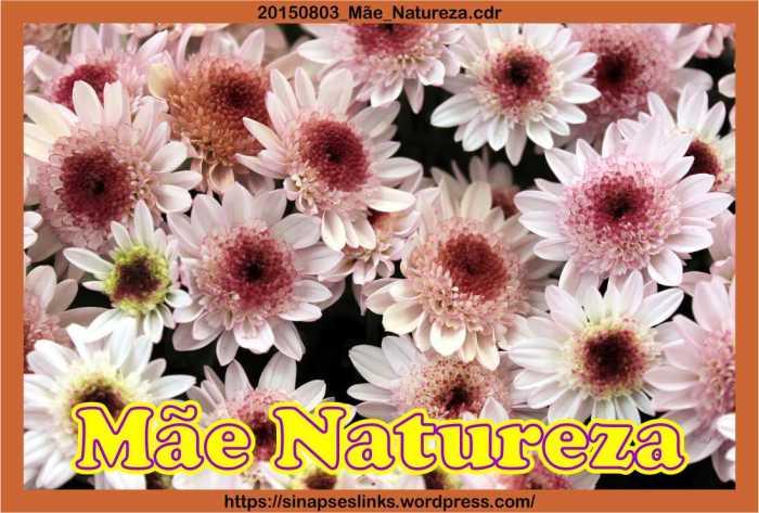 20150803_Mãe_Natureza