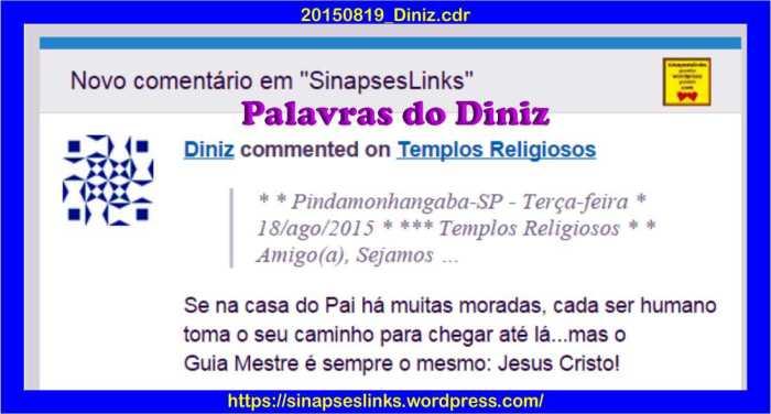 20150819_Diniz