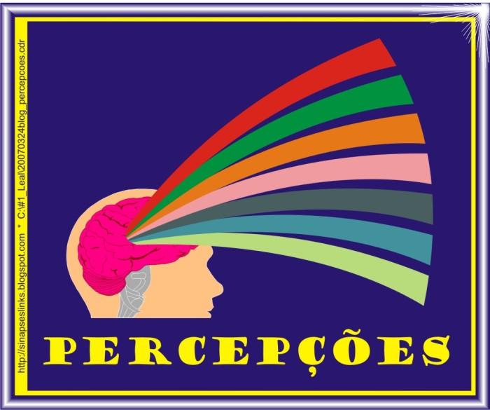 20070324blog_percepcoes