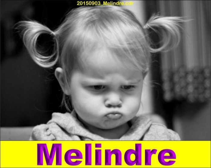 20150903_Melindre