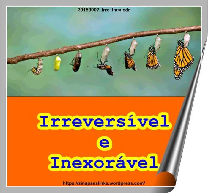 20150907_Irre_Inex