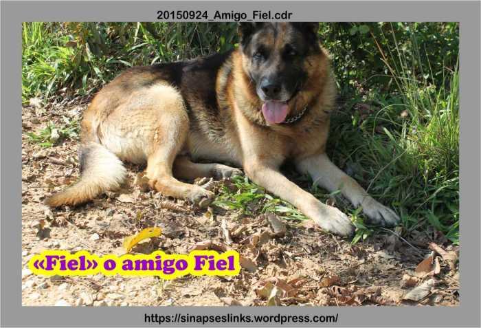 20150924_Amigo_Fiel
