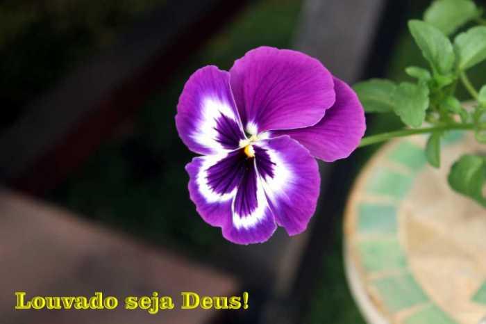 20151014_Louvado_seja_Deus