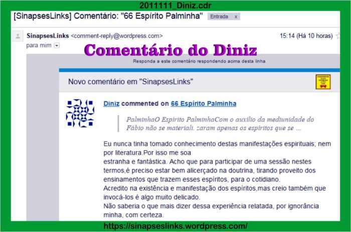2011111_Diniz
