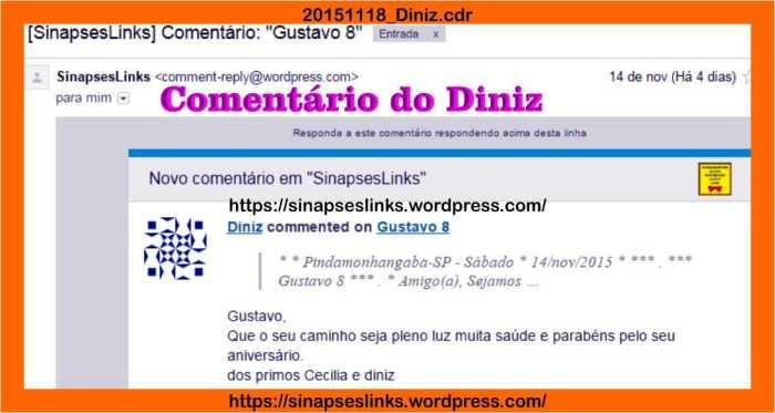 20151118_Diniz