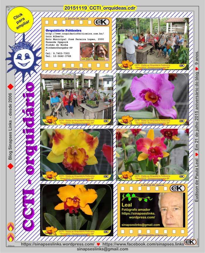20151119_CCTI_orquídeas