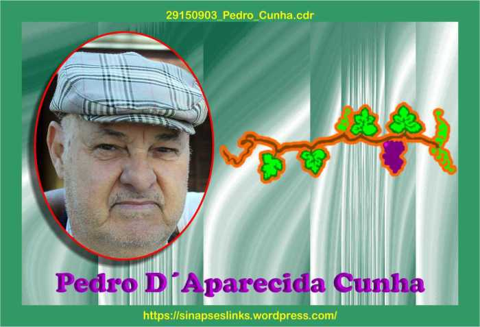 29150903_Pedro_Cunha